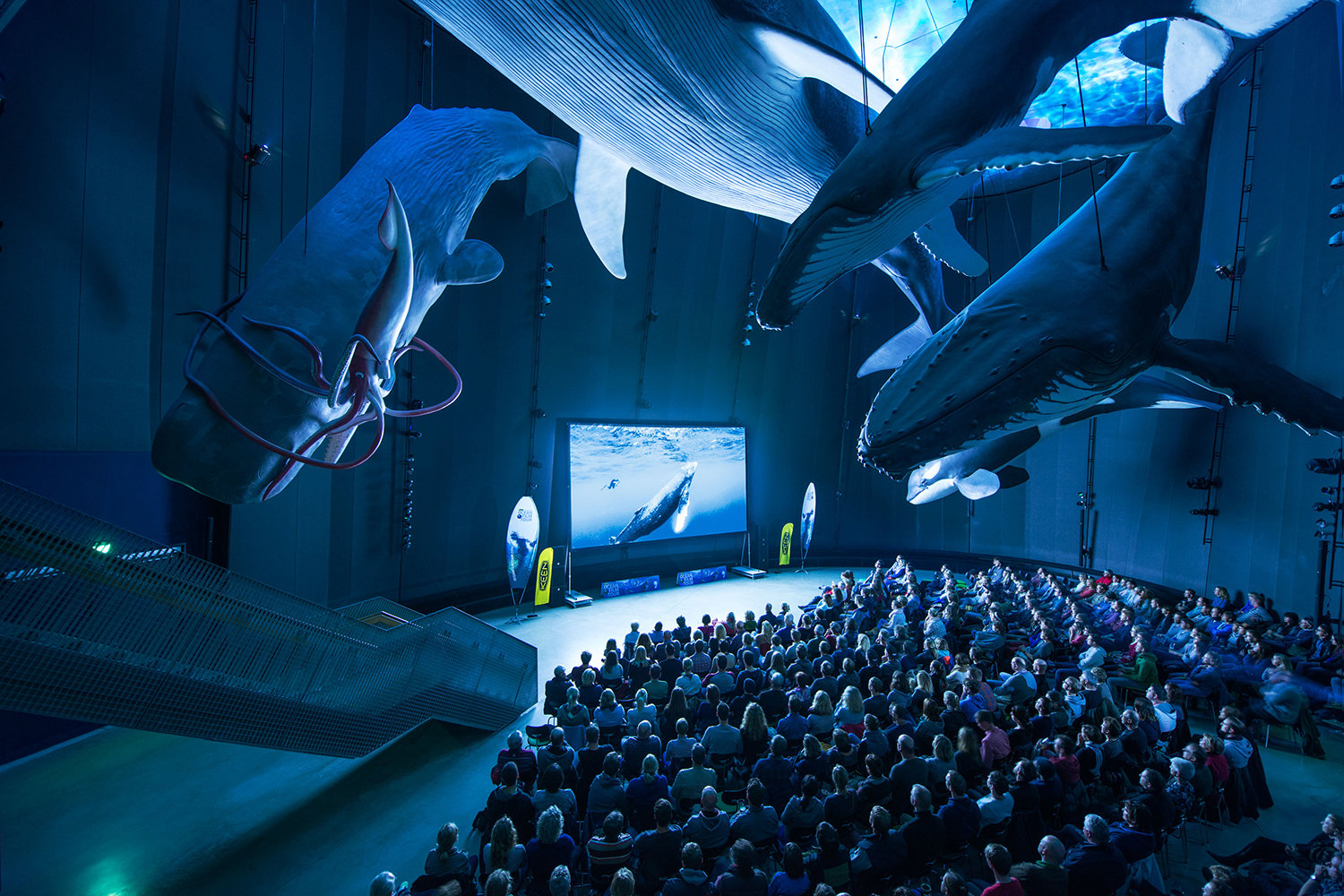 FOTO: International Ocean Film Tour